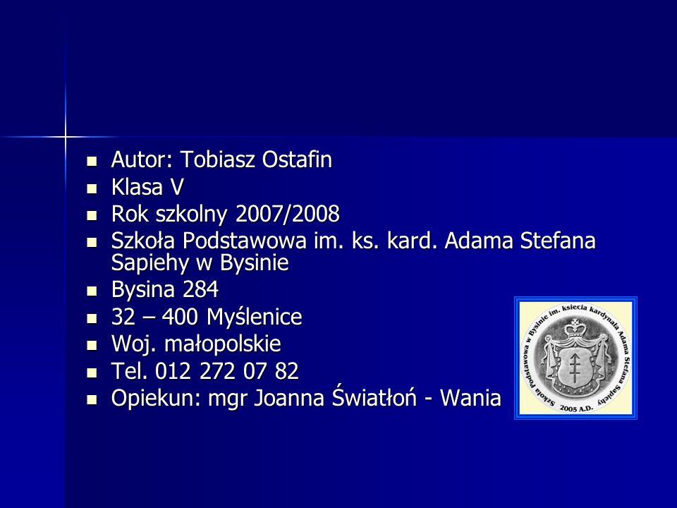 Autor: Tobiasz Ostafin Autor: Tobiasz Ostafin Klasa V Klasa V Rok szkolny 2007/2008 Rok szkolny 2007/2008 Szkoła Podstawowa im.