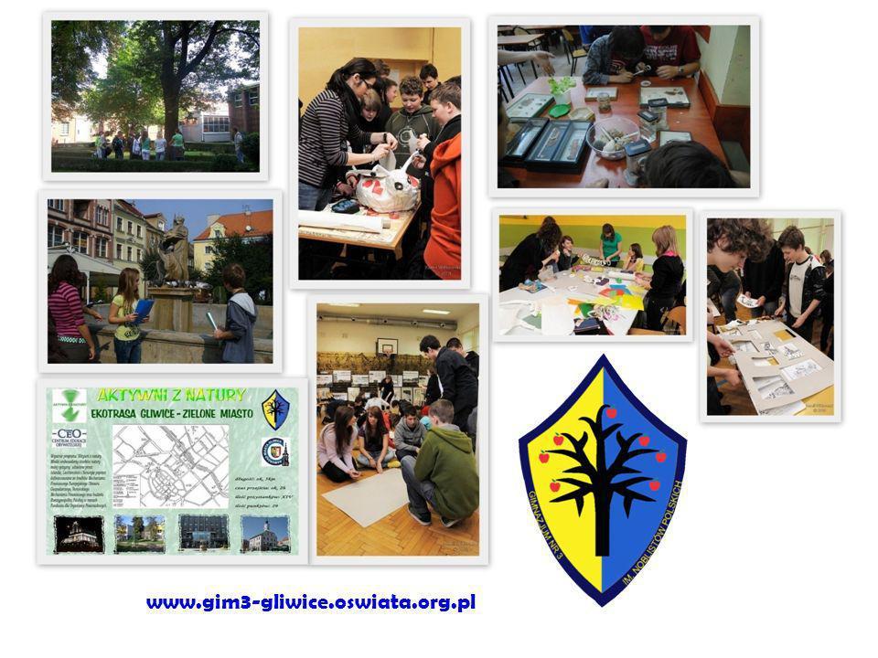 www.gim3-gliwice.oswiata.org.pl