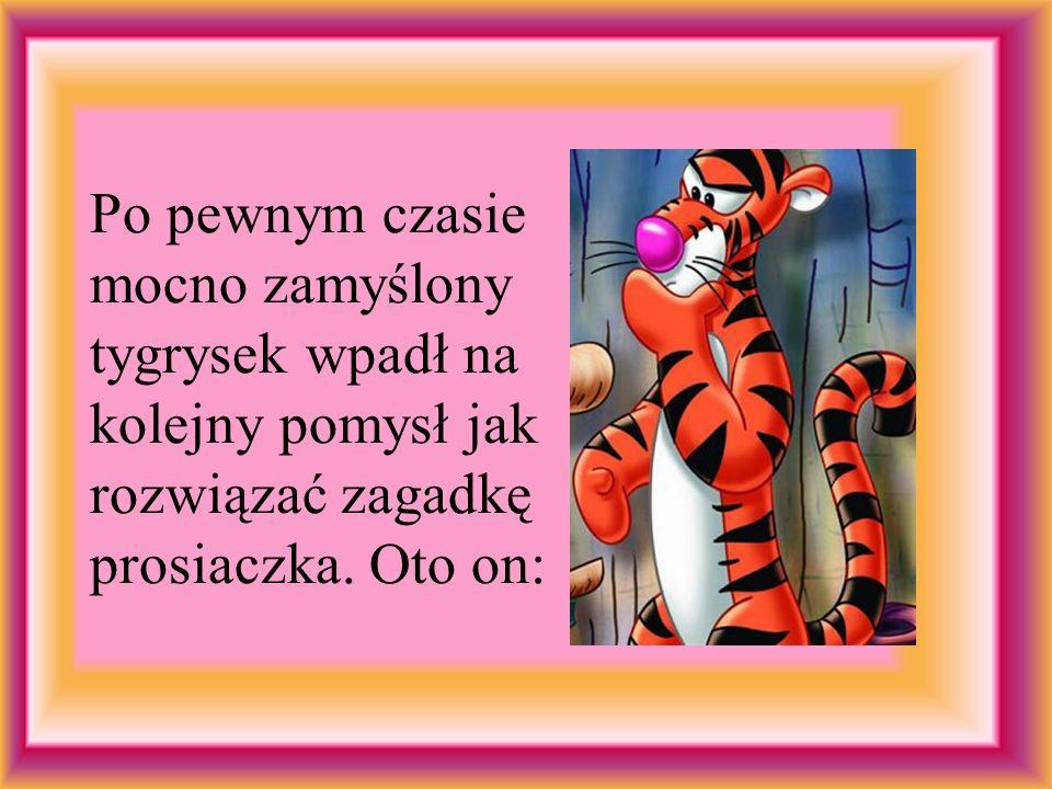 Po pewnym czasie mocno zamyślony tygrysek wpadł na kolejny pomysł jak rozwiązać zagadkę prosiaczka. Oto on: