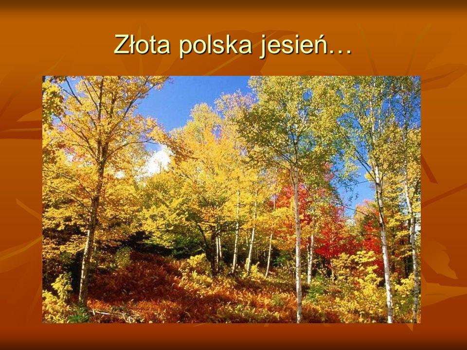 Romantyczna polska jesień…