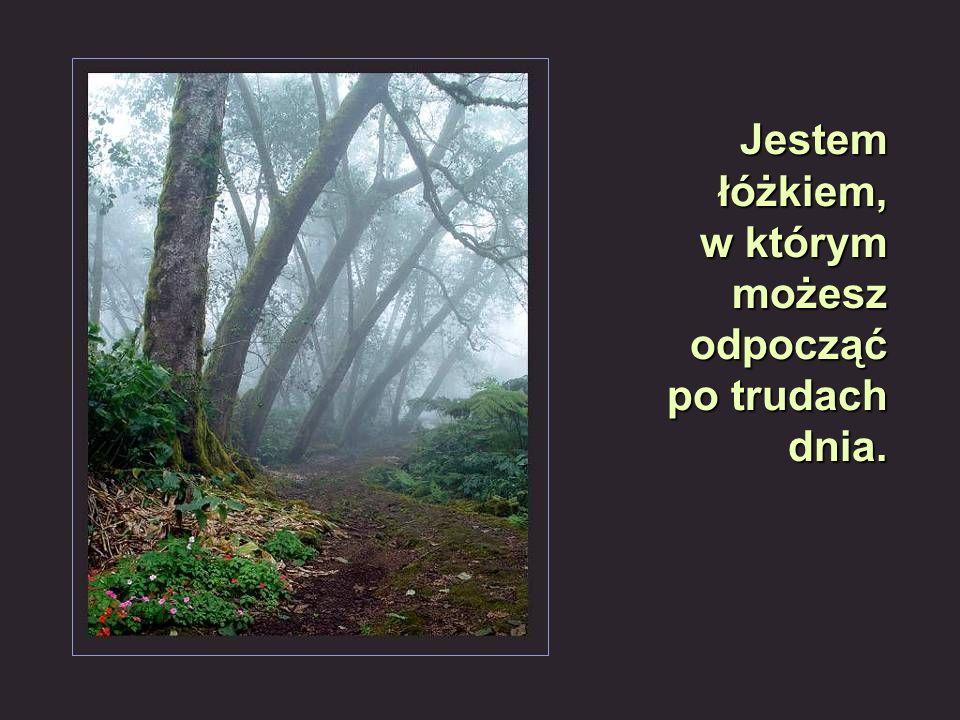 Złota polska jesień…
