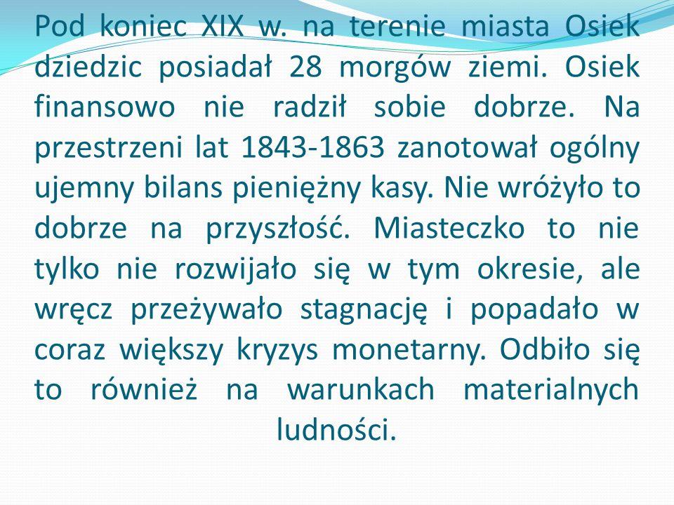 Pod koniec XIX w.na terenie miasta Osiek dziedzic posiadał 28 morgów ziemi.