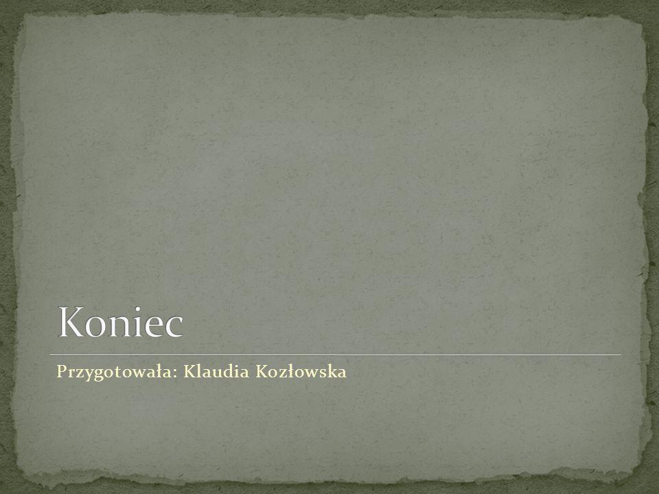Przygotowała: Klaudia Kozłowska