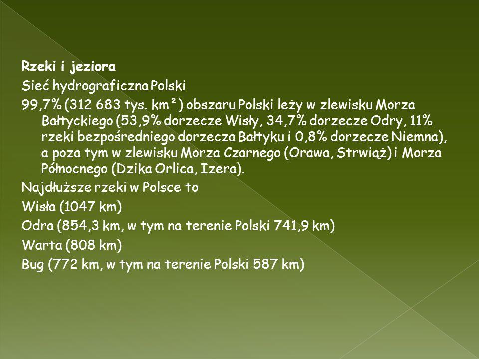 Rzeki i jeziora Sieć hydrograficzna Polski 99,7% (312 683 tys. km²) obszaru Polski leży w zlewisku Morza Bałtyckiego (53,9% dorzecze Wisły, 34,7% dorz