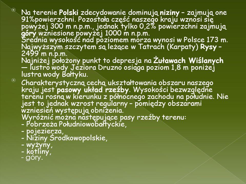 Na terenie Polski zdecydowanie dominują niziny – zajmują one 91%powierzchni. Pozostała część naszego kraju wznosi się powyżej 300 m n.p.m., jednak tyl