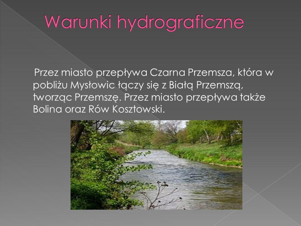 Przez miasto przepływa Czarna Przemsza, która w pobliżu Mysłowic łączy się z Białą Przemszą, tworząc Przemszę. Przez miasto przepływa także Bolina ora