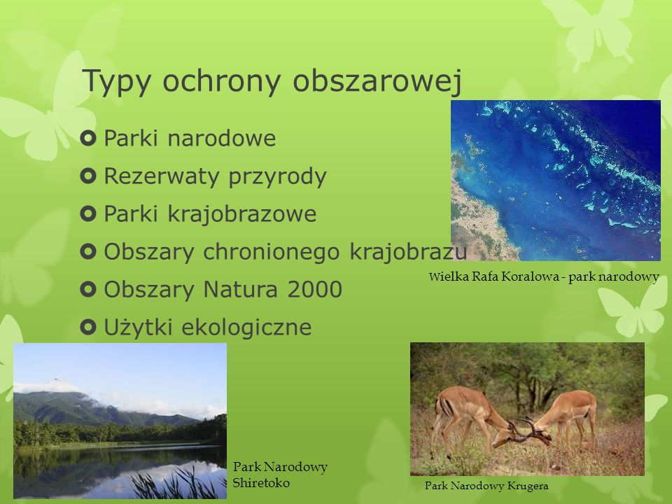 Typy ochrony obszarowej Parki narodowe Rezerwaty przyrody Parki krajobrazowe Obszary chronionego krajobrazu Obszary Natura 2000 Użytki ekologiczne W i