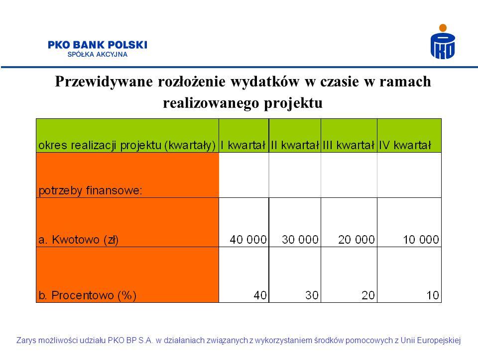 Przewidywane rozłożenie wydatków w czasie w ramach realizowanego projektu Zarys możliwości udziału PKO BP S.A.
