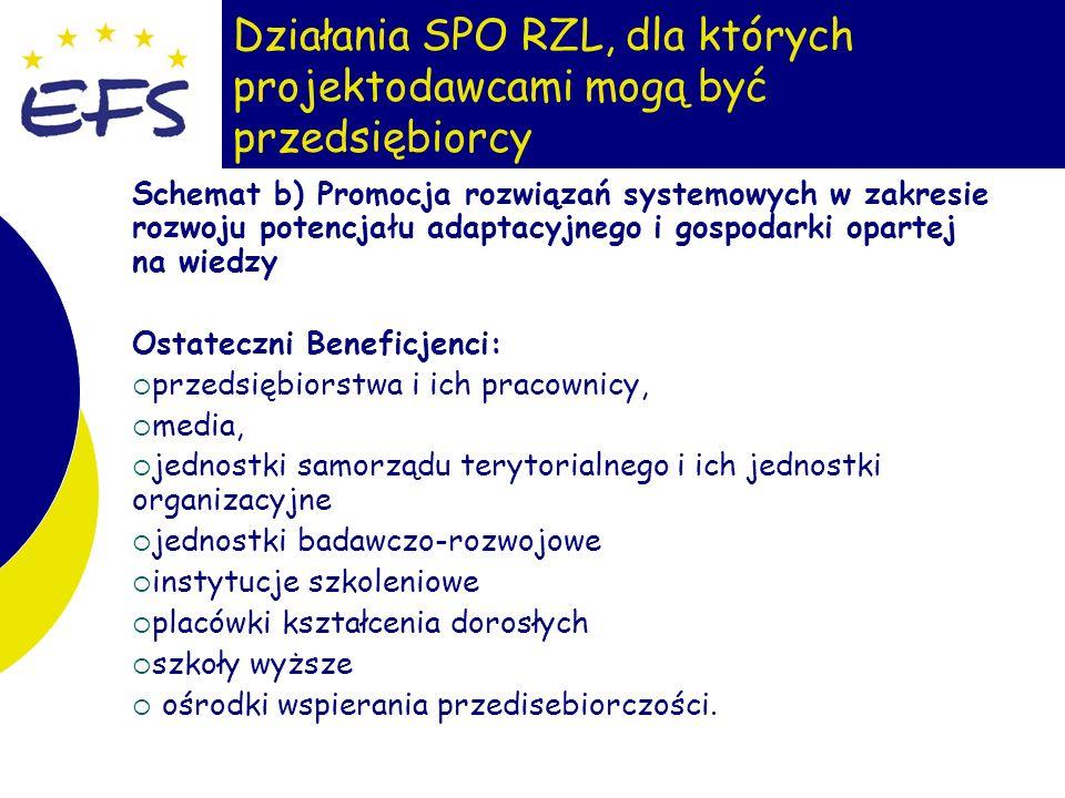 19 Działania SPO RZL, dla których projektodawcami mogą być przedsiębiorcy Schemat b) Promocja rozwiązań systemowych w zakresie rozwoju potencjału adap