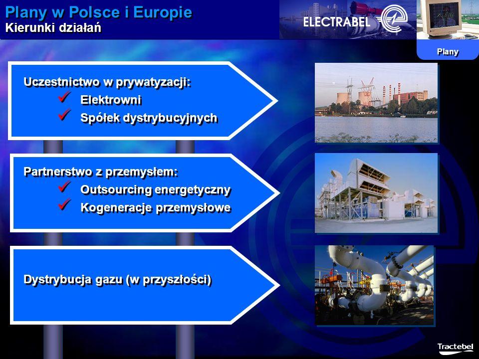 Plany w Polsce i Europie Kierunki działań Plany Uczestnictwo w prywatyzacji: Elektrowni Spółek dystrybucyjnych Partnerstwo z przemysłem: Outsourcing e