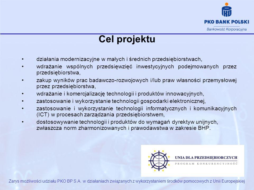 Cel projektu Zarys możliwości udziału PKO BP S.A.