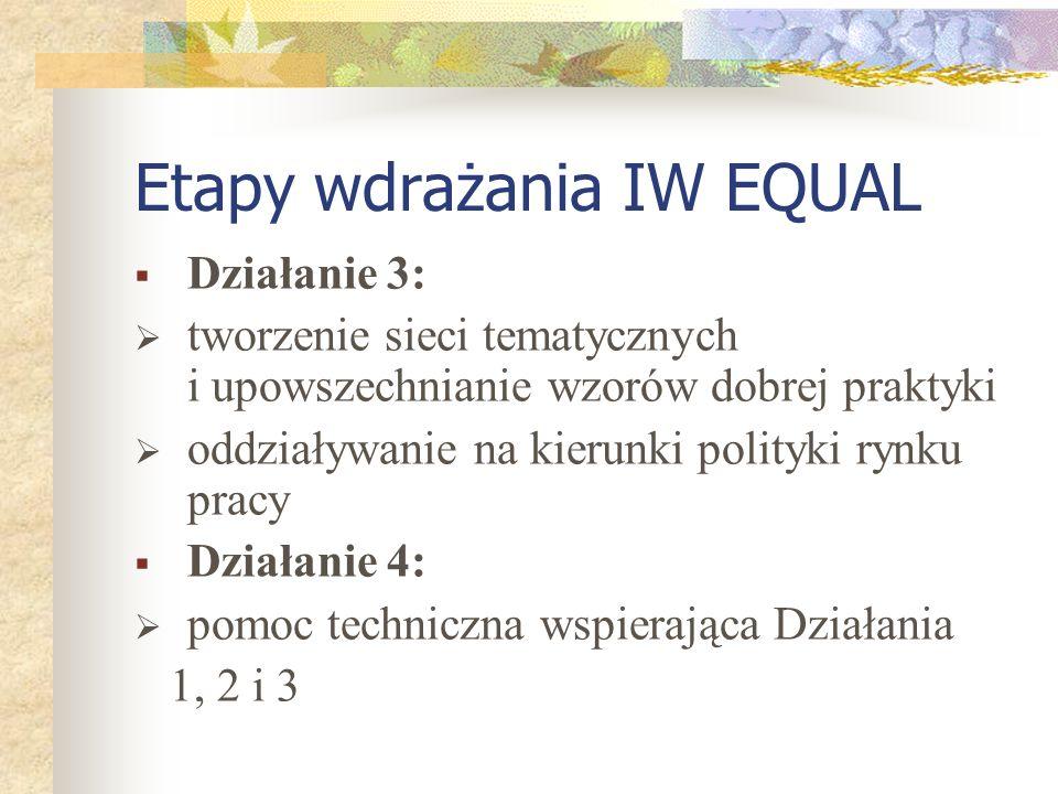 Etapy wdrażania IW EQUAL Działanie 3: tworzenie sieci tematycznych i upowszechnianie wzorów dobrej praktyki oddziaływanie na kierunki polityki rynku pracy Działanie 4: pomoc techniczna wspierająca Działania 1, 2 i 3