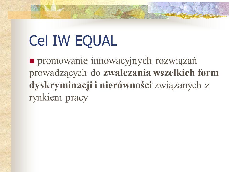 promowanie innowacyjnych rozwiązań prowadzących do zwalczania wszelkich form dyskryminacji i nierówności związanych z rynkiem pracy Cel IW EQUAL
