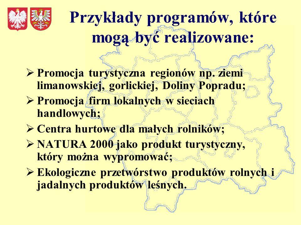 Przykłady programów, które mogą być realizowane: Promocja turystyczna regionów np.