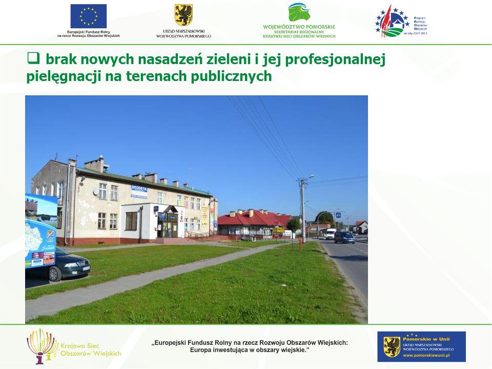 brak nowych nasadzeń zieleni i jej profesjonalnej pielęgnacji na terenach publicznych