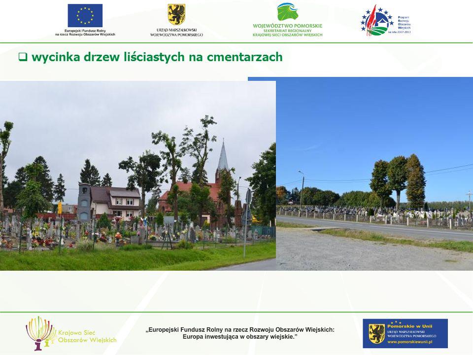 wycinka drzew liściastych na cmentarzach