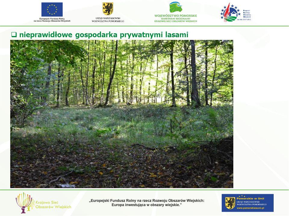 nieprawidłowe gospodarka prywatnymi lasami