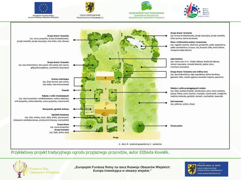 Przykładowy projekt tradycyjnego ogrodu przyjaznego przyrodzie, autor Elżbieta Kowalik.