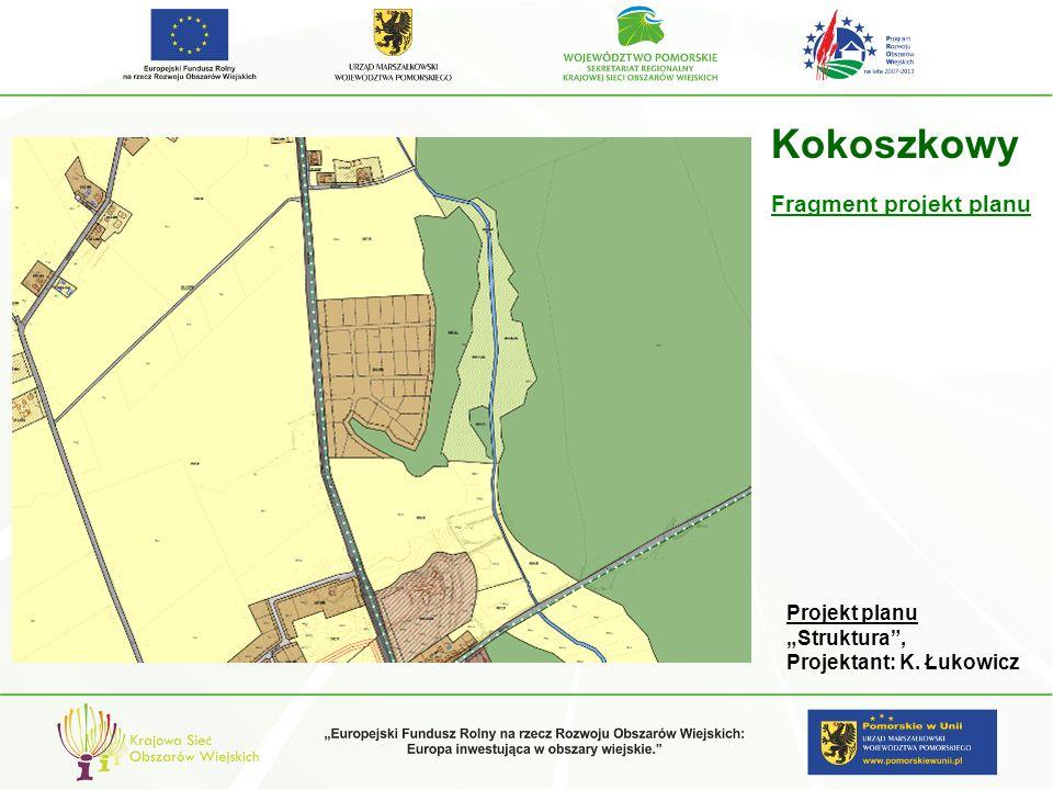 gm. Pelplin Kokoszkowy Projekt planu Struktura, Projektant: K. Łukowicz Fragment projekt planu