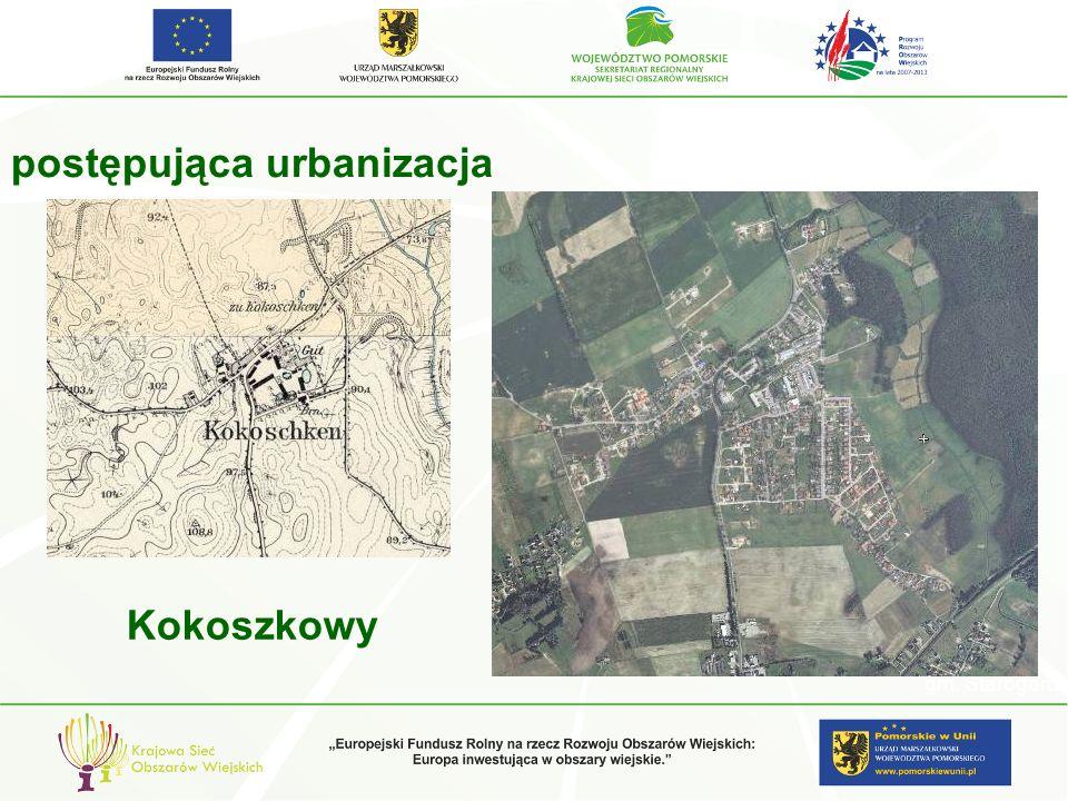 Zabudowa ciągnąca się w stronę Starogardu Gdańskiego – widok z drogi wojewódzkiej nr 222