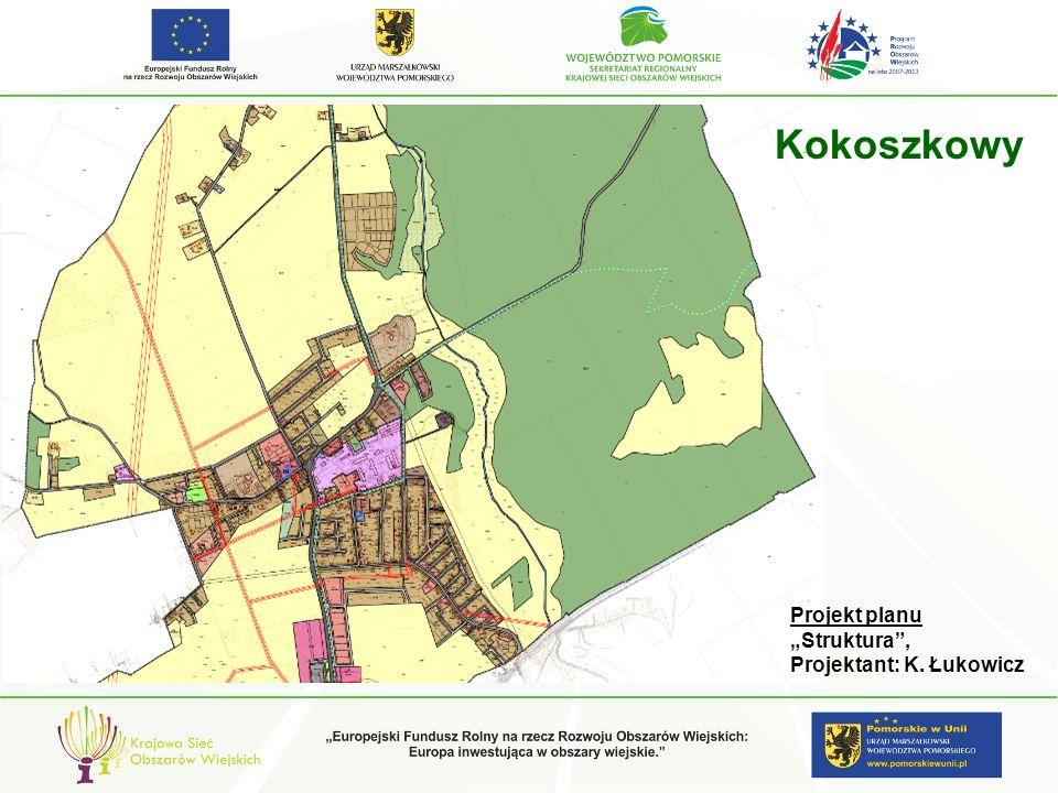 gm. Pelplin Projekt planu Struktura, Projektant: K. Łukowicz Kokoszkowy