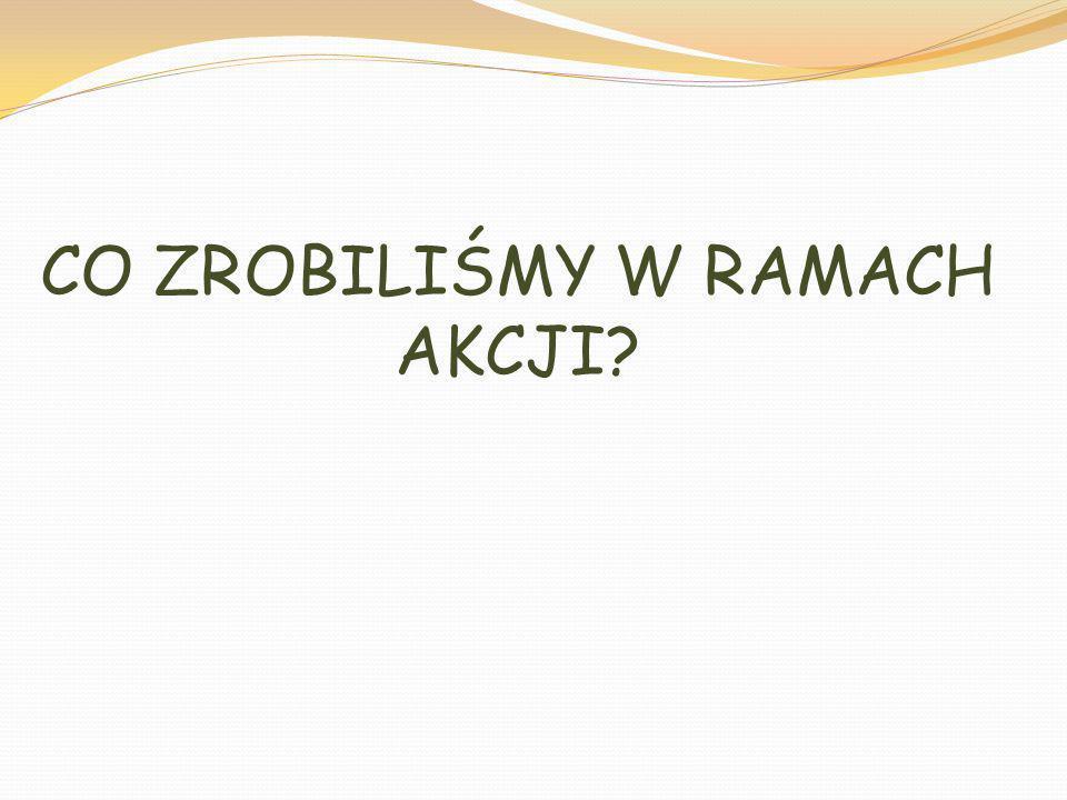 CO ZROBILIŚMY W RAMACH AKCJI?