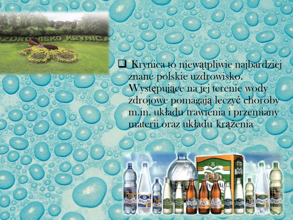 Krynica to niew ą tpliwie najbardziej znane polskie uzdrowisko. Wyst ę puj ą ce na jej terenie wody zdrojowe pomagaj ą leczy ć choroby m.in. uk ł adu