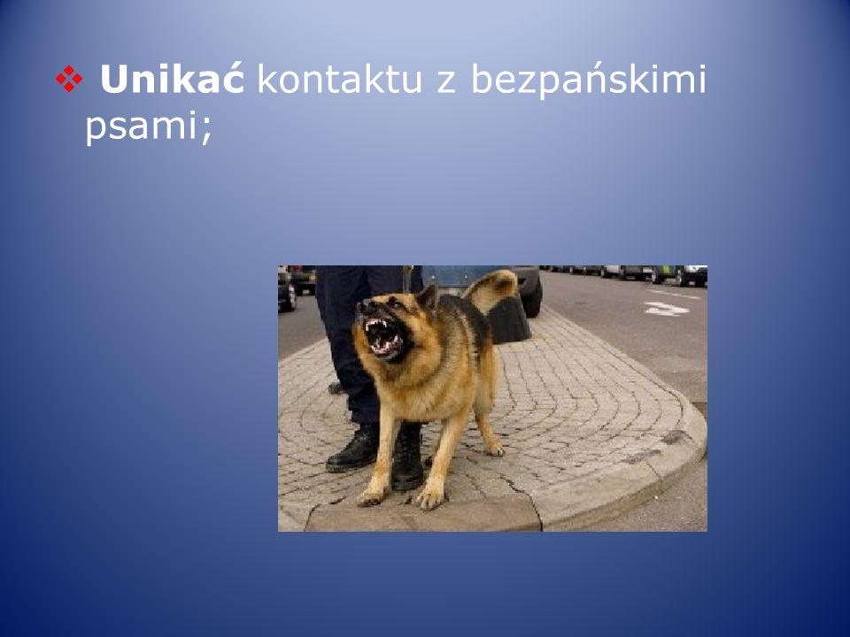 Unikać kontaktu z bezpańskimi psami;