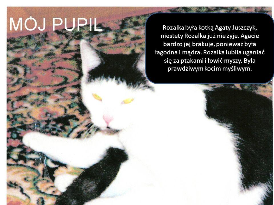Rozalka była kotką Agaty Juszczyk, niestety Rozalka już nie żyje. Agacie bardzo jej brakuje, ponieważ była łagodna i mądra. Rozalka lubiła uganiać się