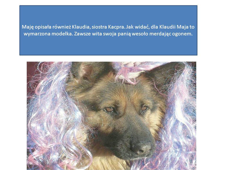 Lula, kotka Karoliny Kijak, ma rok i 5 miesięcy.