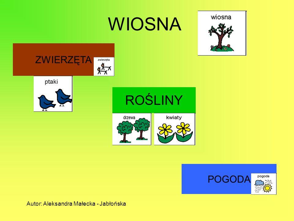 WIOSNA ROŚLINY ZWIERZĘTA POGODA Autor: Aleksandra Małecka - Jabłońska