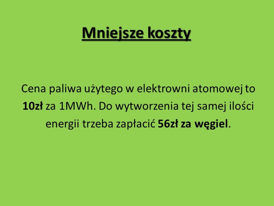 Mało szkodliwe paliwo Wypalone paliwo jądrowe nie zanieczyszcza na stałe Ziemi, bo jego aktywność z czasem maleje.