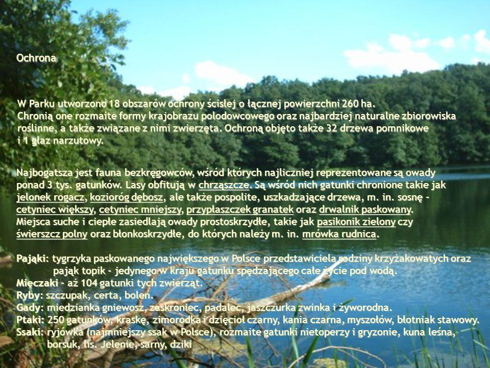 W Parku utworzono 18 obszarów ochrony ścisłej o łącznej powierzchni 260 ha. Chronią one rozmaite formy krajobrazu polodowcowego oraz najbardziej natur
