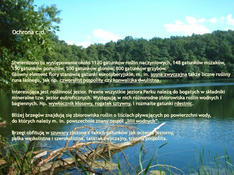 Ochrona c.d. Stwierdzono tu występowanie około 1120 gatunków roślin naczyniowych, 148 gatunków mszaków, 150 gatunków porostów, 500 gatunków glonów, 80