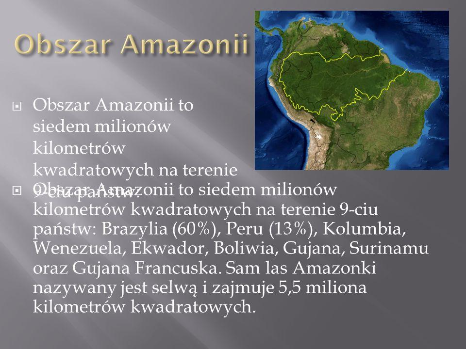 Obszar Amazonii to siedem milionów kilometrów kwadratowych na terenie 9-ciu państw: Obszar Amazonii to siedem milionów kilometrów kwadratowych na tere