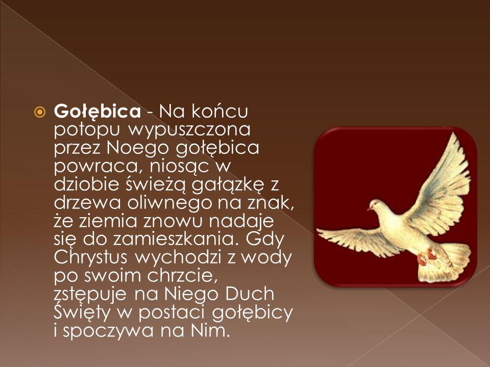 Gołębica - Na końcu potopu wypuszczona przez Noego gołębica powraca, niosąc w dziobie świeżą gałązkę z drzewa oliwnego na znak, że ziemia znowu nadaje