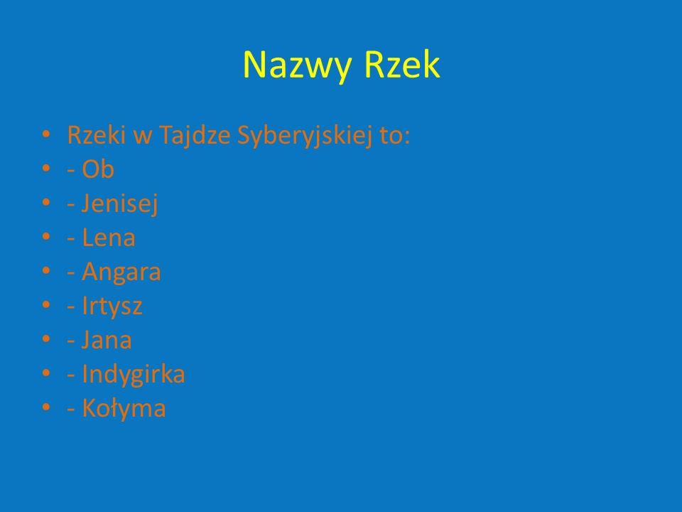 Nazwy Rzek Rzeki w Tajdze Syberyjskiej to: - Ob - Jenisej - Lena - Angara - Irtysz - Jana - Indygirka - Kołyma