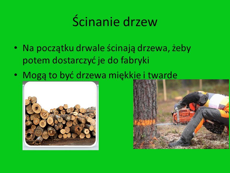 Ścinanie drzew Na początku drwale ścinają drzewa, żeby potem dostarczyć je do fabryki Mogą to być drzewa miękkie i twarde