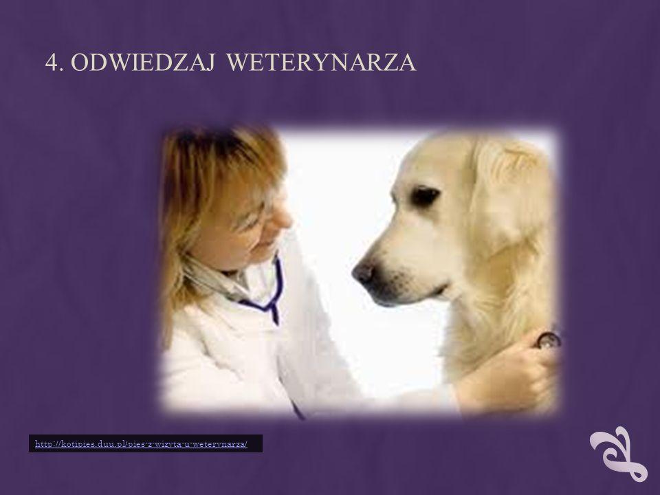 4. ODWIEDZAJ WETERYNARZA http://kotipies.duu.pl/pies-z-wizyta-u-weterynarza/