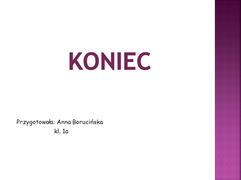 Przygotowała: Anna Borucińska kl. 1a