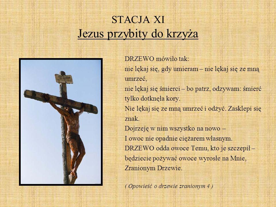 STACJA XI Jezus przybity do krzyża DRZEWO mówiło tak: nie lękaj się, gdy umieram – nie lękaj się ze mną umrzeć, nie lękaj się śmierci – bo patrz, odzy