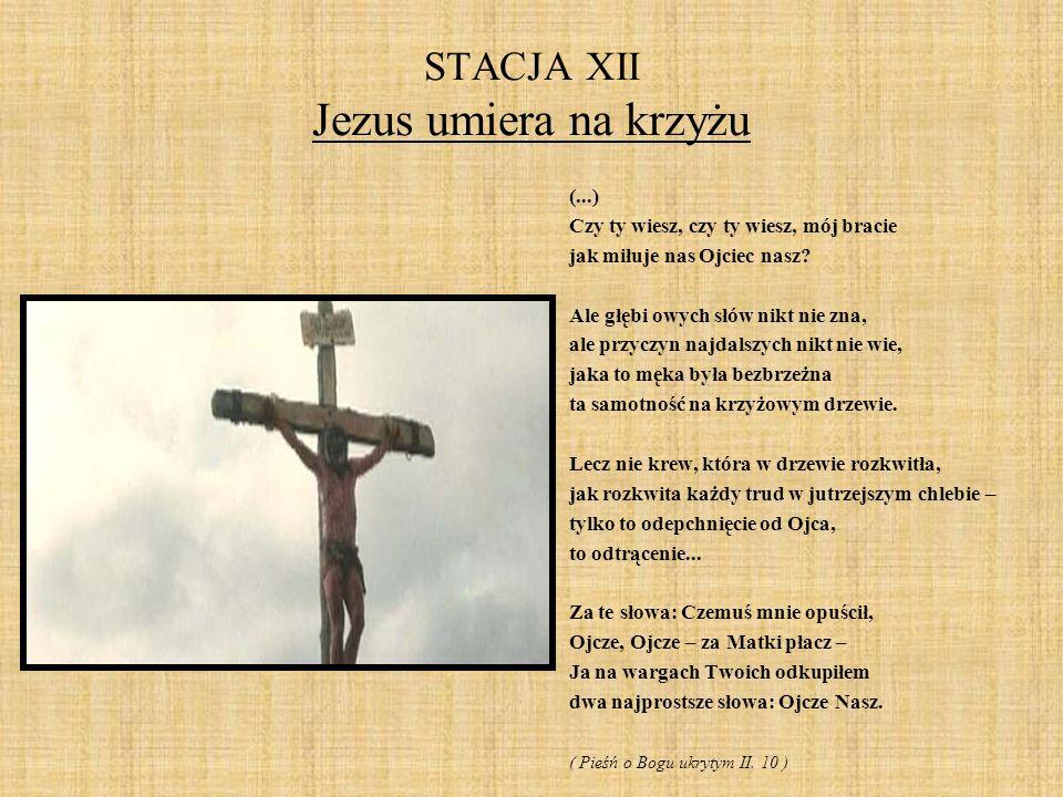 STACJA XII Jezus umiera na krzyżu (...) Czy ty wiesz, czy ty wiesz, mój bracie jak miłuje nas Ojciec nasz? Ale głębi owych słów nikt nie zna, ale przy