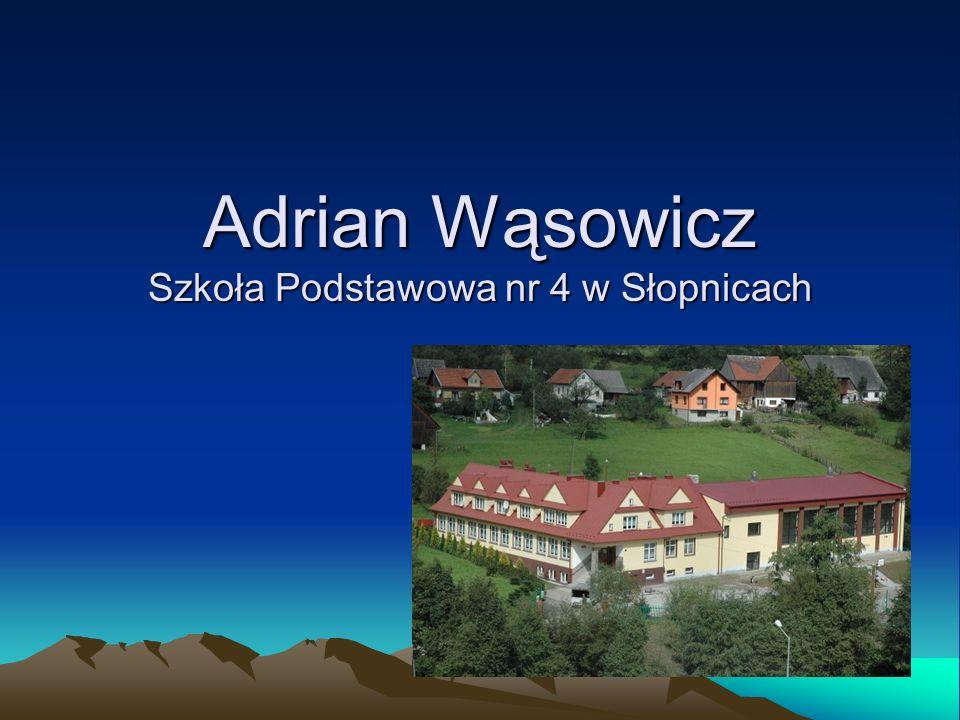 Adrian Wąsowicz Szkoła Podstawowa nr 4 w Słopnicach