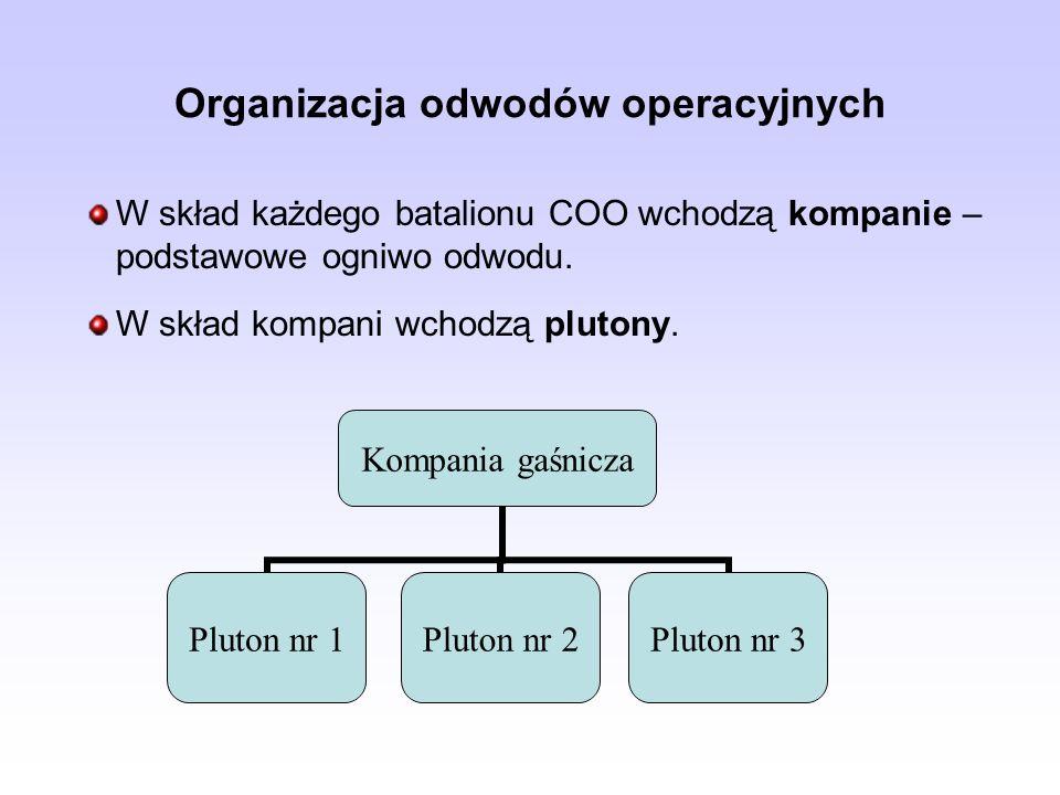 Organizacja odwodów operacyjnych W skład każdego batalionu COO wchodzą kompanie – podstawowe ogniwo odwodu.
