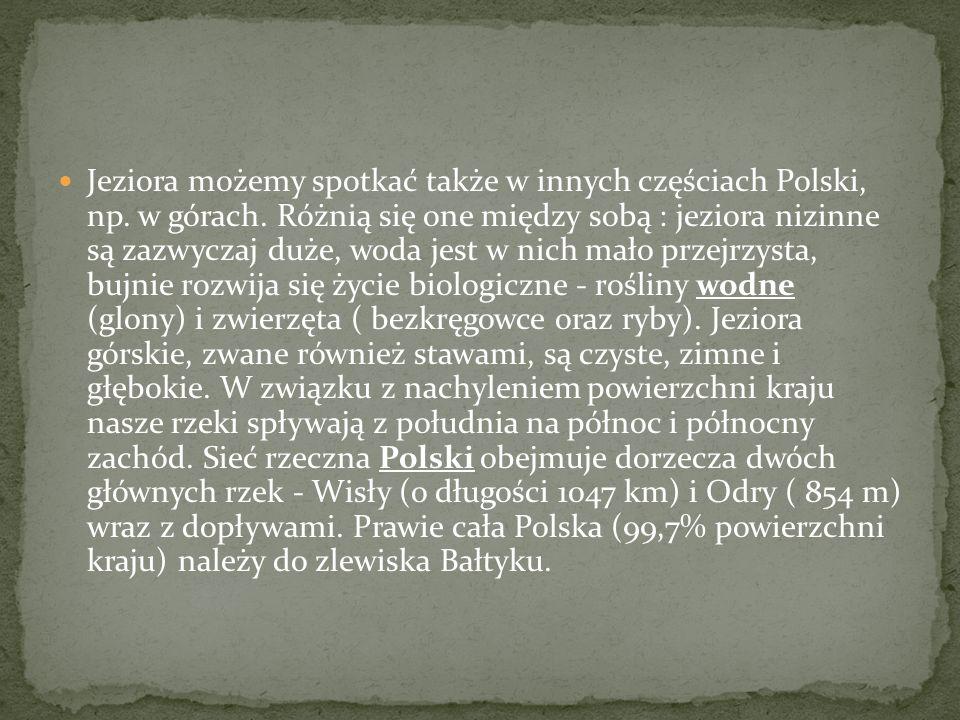 Jeziora możemy spotkać także w innych częściach Polski, np. w górach. Różnią się one między sobą : jeziora nizinne są zazwyczaj duże, woda jest w nich