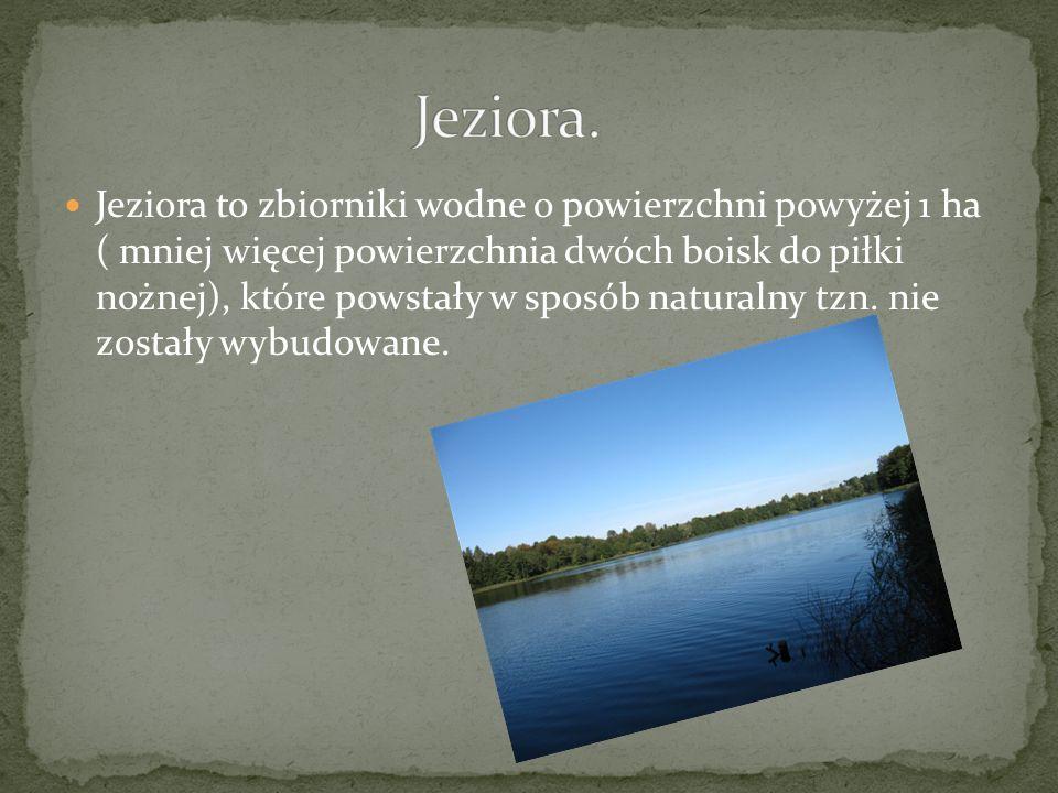 Jeziora to zbiorniki wodne o powierzchni powyżej 1 ha ( mniej więcej powierzchnia dwóch boisk do piłki nożnej), które powstały w sposób naturalny tzn.