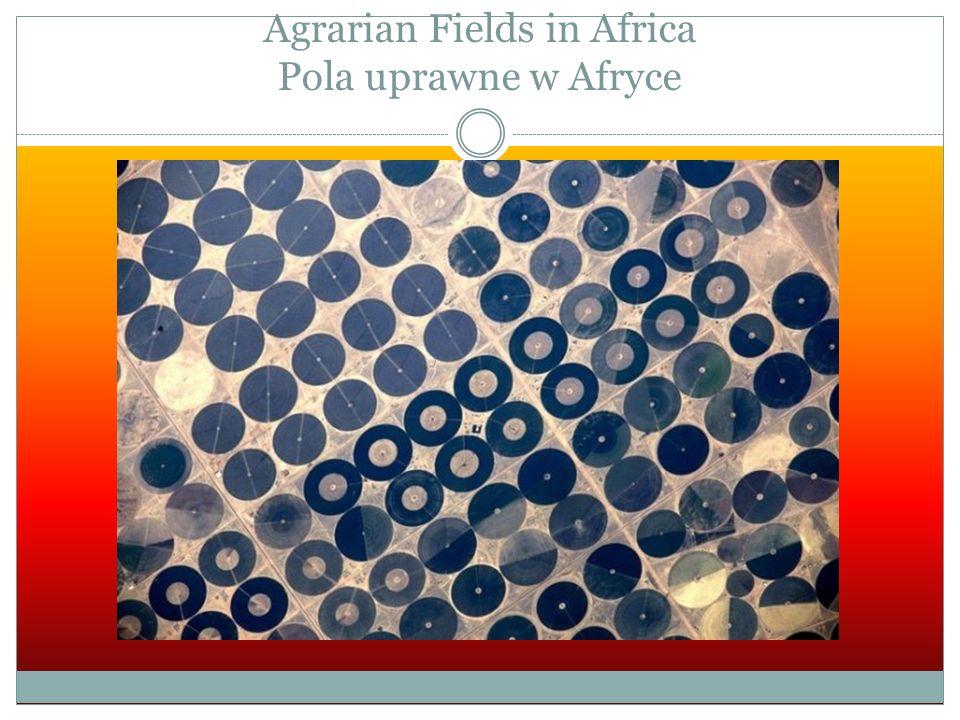 Agrarian Fields in Africa Pola uprawne w Afryce