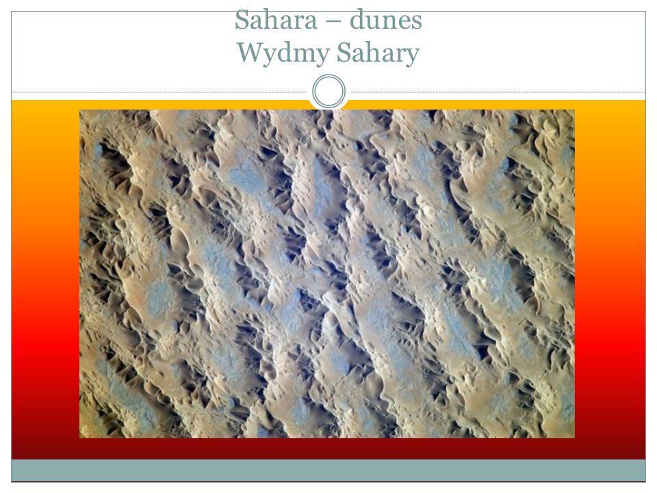 Sahara – dunes Wydmy Sahary