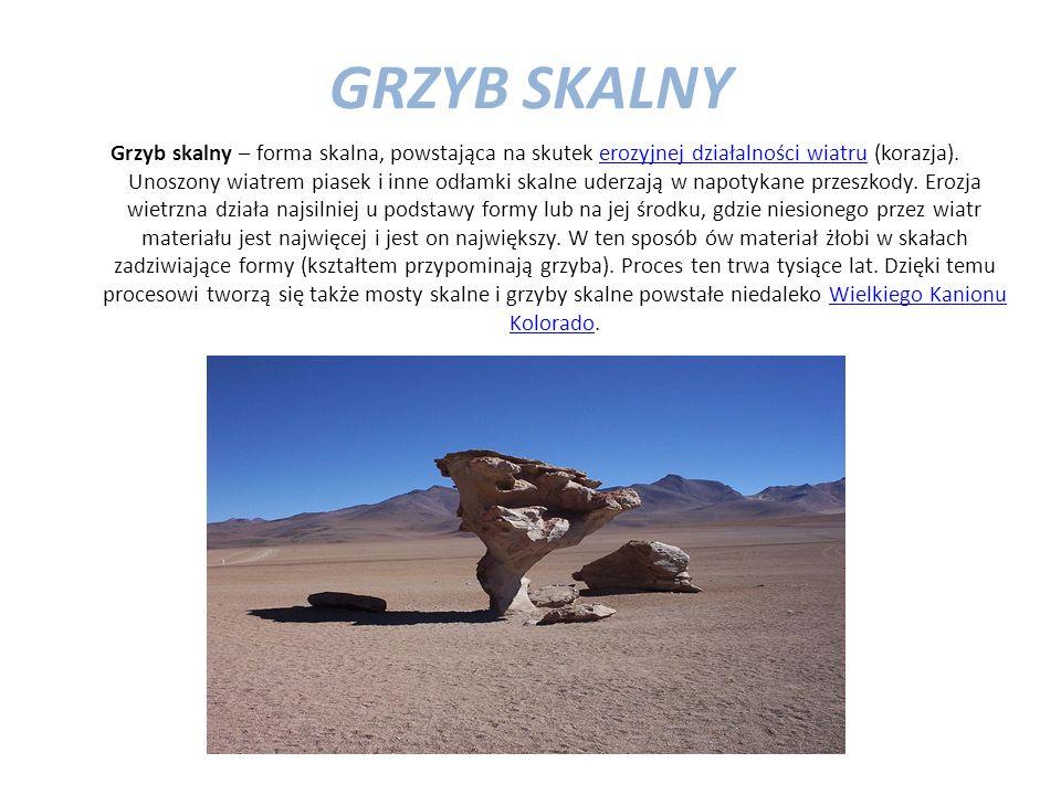 GRZYB SKALNY Grzyb skalny – forma skalna, powstająca na skutek erozyjnej działalności wiatru (korazja). Unoszony wiatrem piasek i inne odłamki skalne