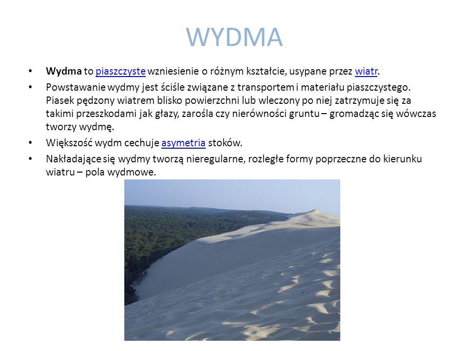 WYDMA Wydma to piaszczyste wzniesienie o różnym kształcie, usypane przez wiatr.piaszczystewiatr Powstawanie wydmy jest ściśle związane z transportem i